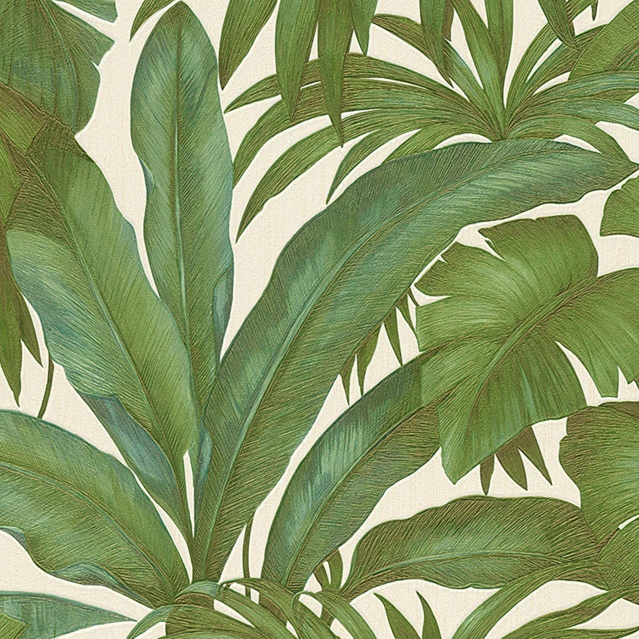 Absorbing A S Creation Wallpapers Versace Green Palm Leaf Wallpaper Versace Green Palm Leaf Wallpaper Palm Leaf Wallpaper Uk Palm Leaf Wallpaper B Q houzz-02 Palm Leaf Wallpaper