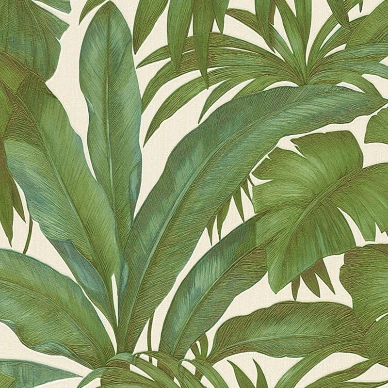 Large Of Palm Leaf Wallpaper