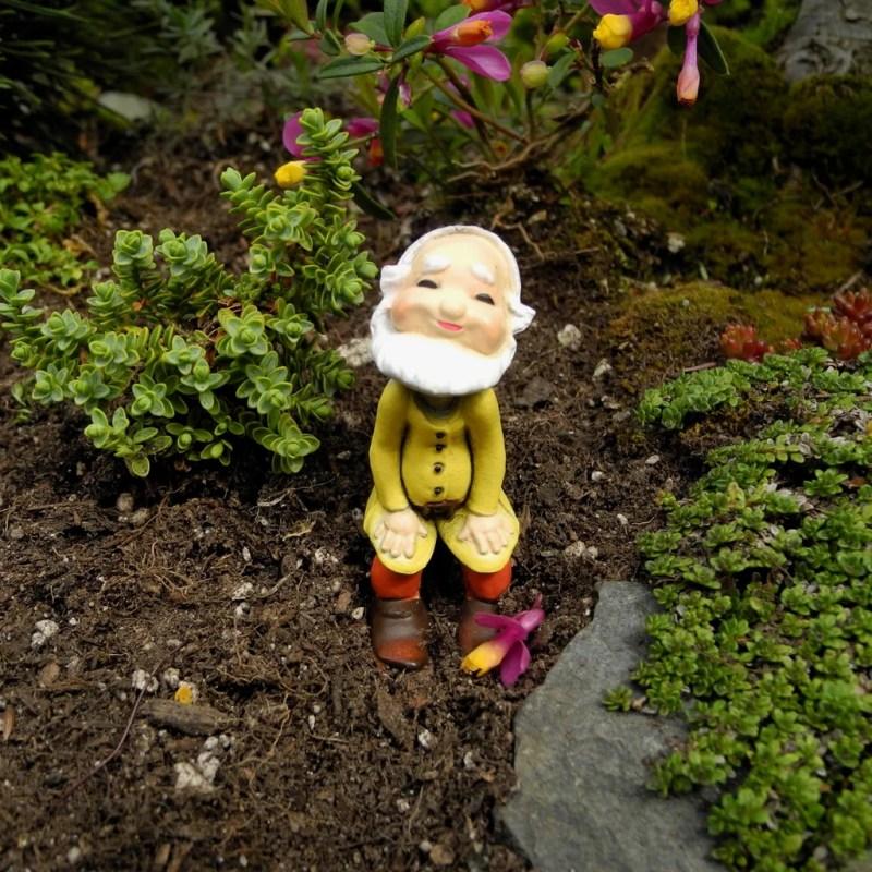 Large Of Mini Gnome Gardens