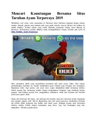 Mencari keuntungan bersama situs taruhan ayam terpercaya 2019