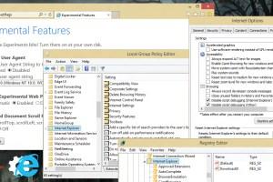 Internet Explorer Advanced and Experimental Settings