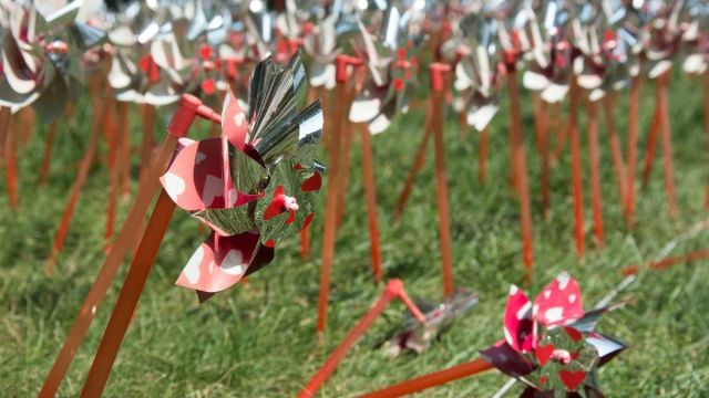 Pinwheels to honor the lost were planted between the Student Activities Center and the Melville Library—an intended total of 2986.
