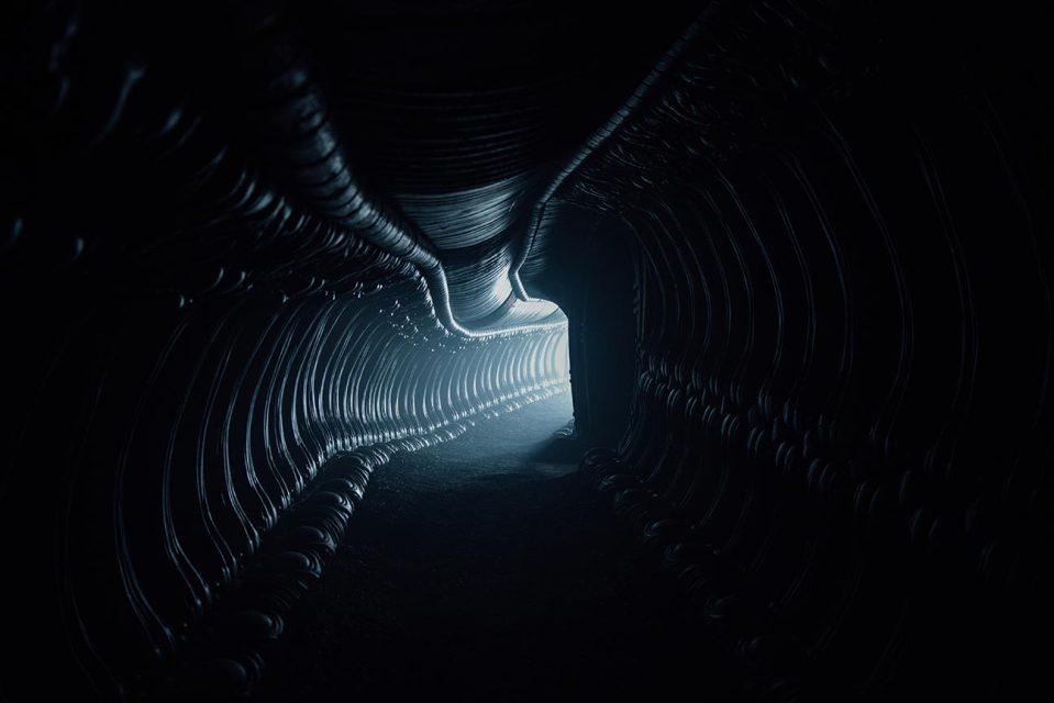 Alien Covenant Red Band Trailer Screencap