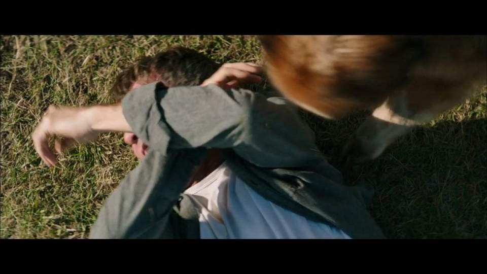 A Dog's Purpose Featurette - Story Behind the Story (2017) Screen Capture