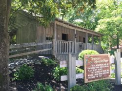 Small Of Dolly Parton House