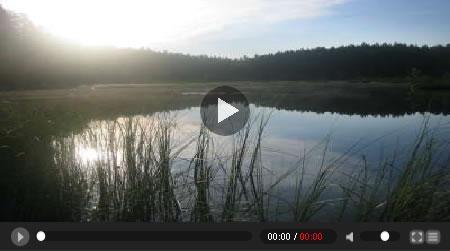 reproductor videos flash web Reproductor de videos en flash para tu web