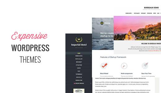Expensive WordPress Themes