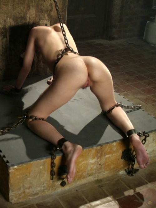 sexy slave girls nude tied up