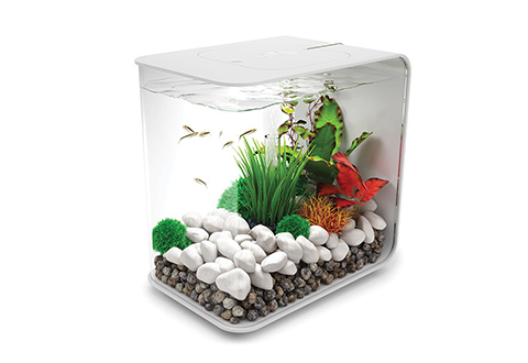 All In One 4 Gallon Rectangle Aquarium @ Sharper Image