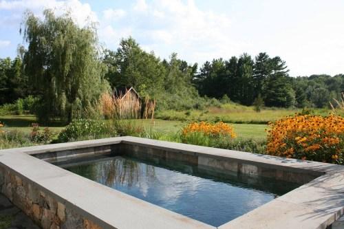 Medium Of Backyard Reflecting Pool