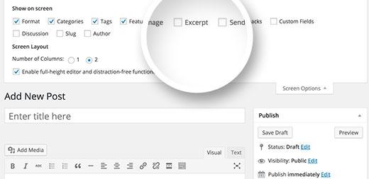 Showing excerpt option on post edit screen