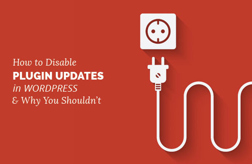 How to Disable Plugin Updates in WordPress