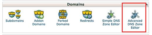 Advanced DNS zone editor in cPanel dashboard