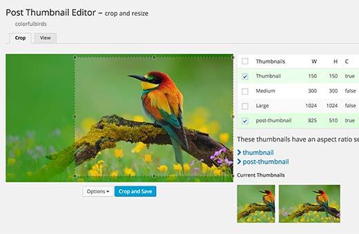 Editing post thumbnails in WordPress