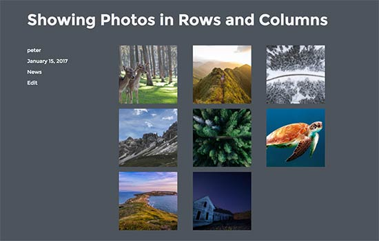 Photos in rows and column layout in WordPress