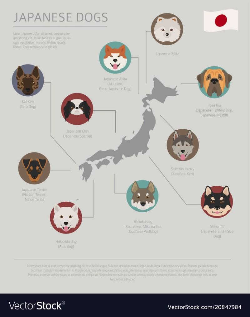 Large Of Japanese Dog Breeds