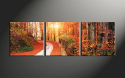 Small Of 3 Piece Canvas Art
