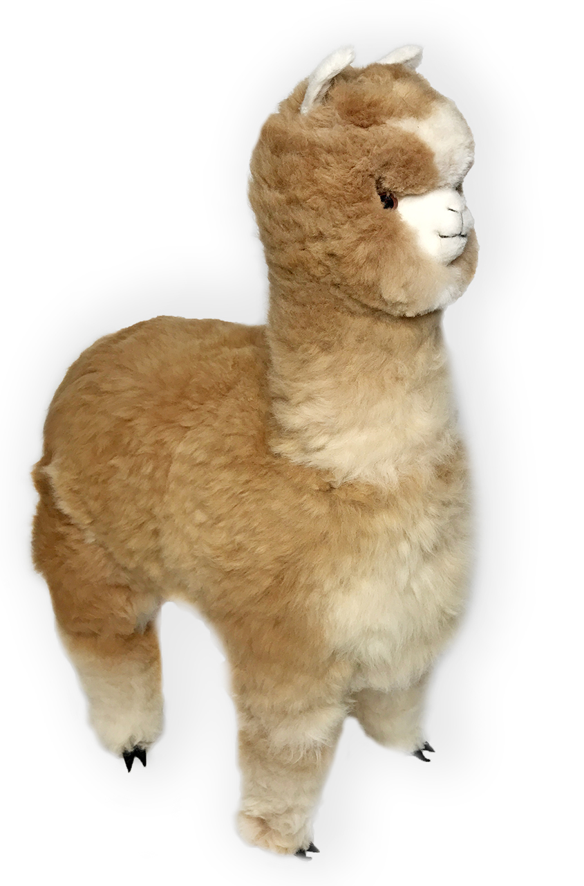 Fullsize Of Llama Stuffed Animal