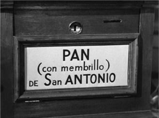 Pan de san antonio 4