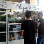【Fish papa-カントリーモールに出来た魚のペットショップー】