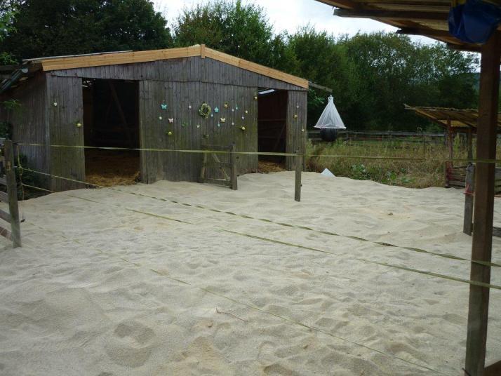 paddockplatten-sandstrand-10