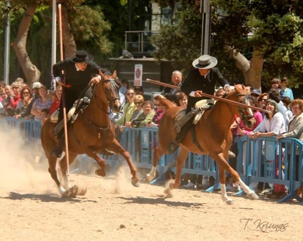 Excurciones a caballo