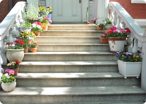 flower pots on stoop
