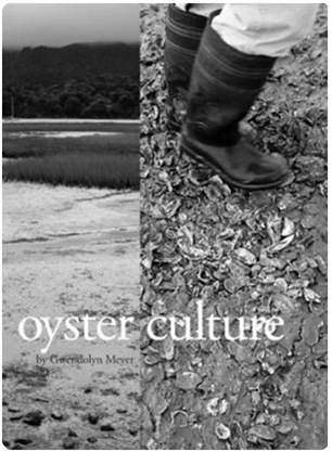 oyster culture book