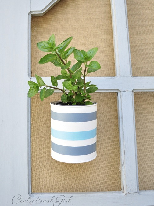 cg striped paint can planter