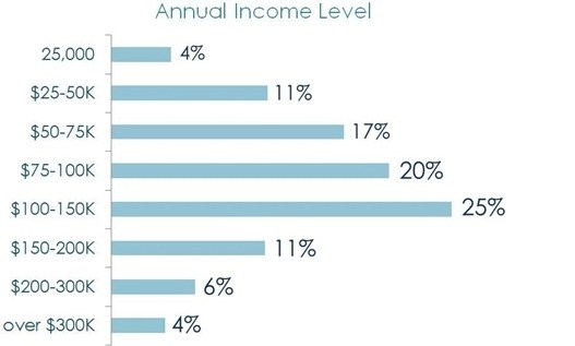 annual income level