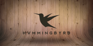 Hvmmingbyrd New Single