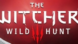 The Witcher Beitrag