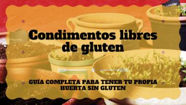 condimentos-libres-gluten