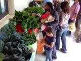 Urban Farm Produce Distribution