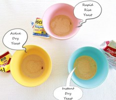 Yeast – tutorial