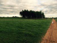 Fazenda a Venda em Bonito Ms, com 4.860 hectares