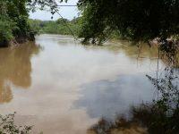 Fazenda para venda com 1.963 hectares na beira do rio Miranda
