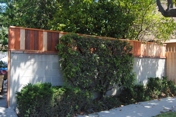 fence-after.jpg