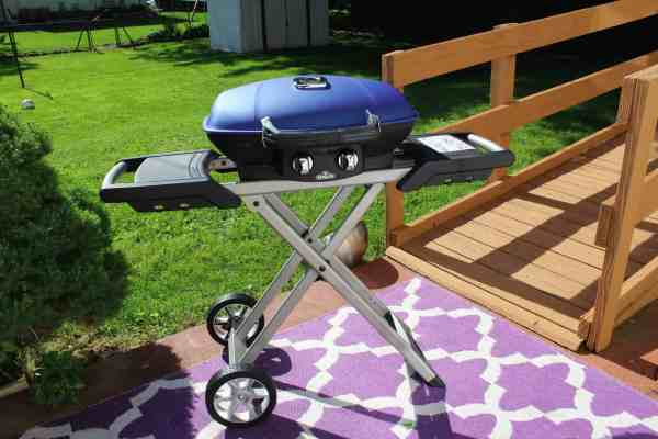 Get Your Gourmet Grill On with Napoleon