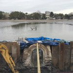 Only the Pelicans are Enjoying Colonial Lake – A Renovation Update