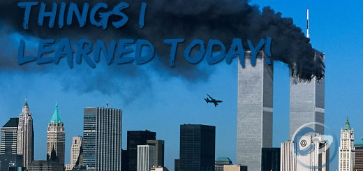 Search-and-Rescue-Dogs-of-9-11