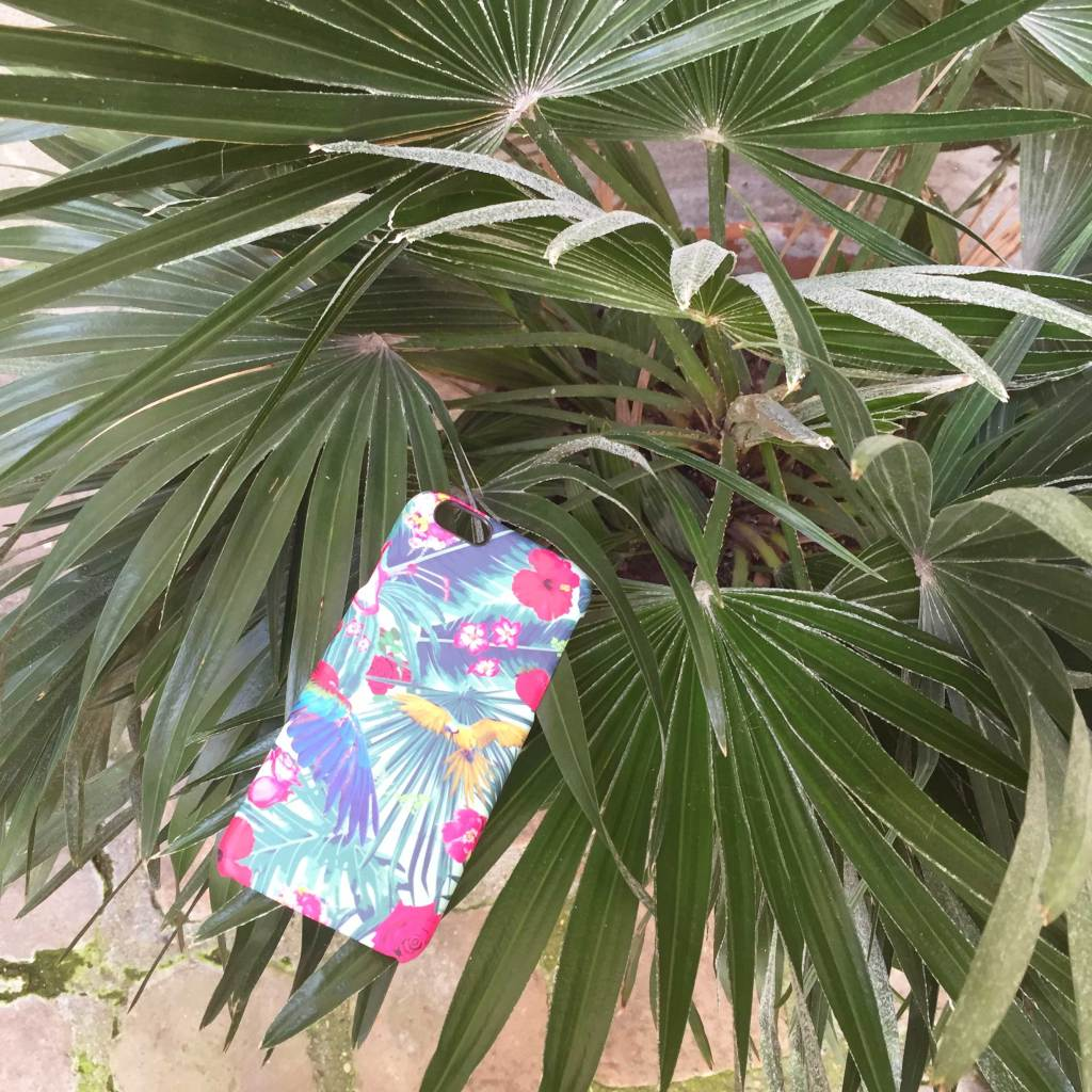 coque-tropicale-caseable