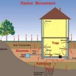radonmovement