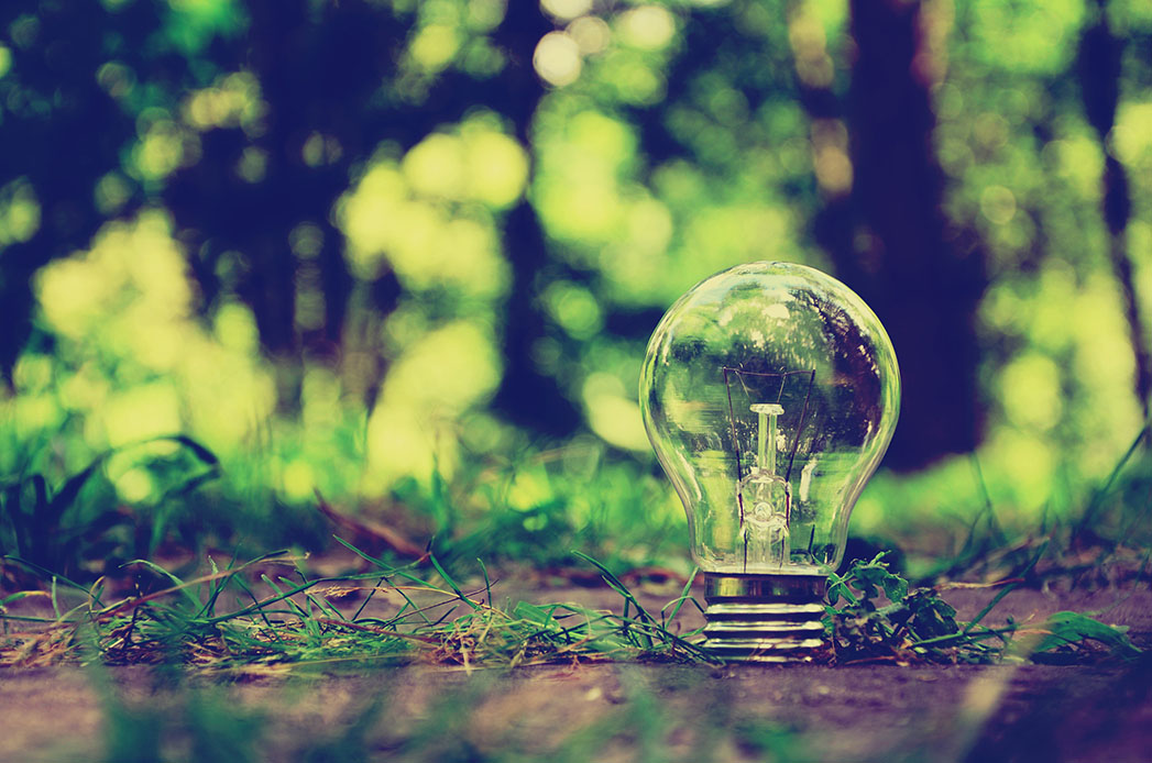 Lamp in forest is a symbol of ecology & Energy Saving! Take care of energy! Take care of natural resources!