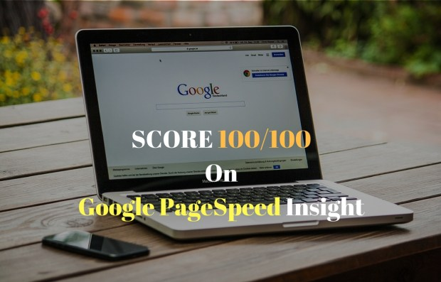 score 100 on google pagespeed insight with wordpress