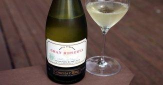Serie Riberas Gran Reserva Sauvignon Blanc