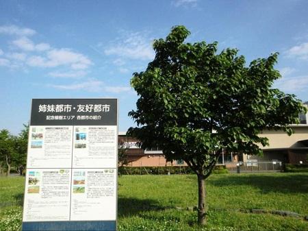 oomori-furusato-park10