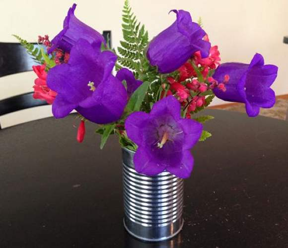 Campanula mix bouquet