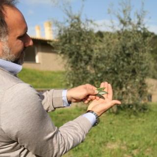 Cesare Bianchini