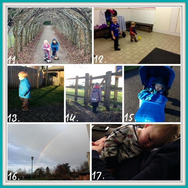 week 3 project 365 2015